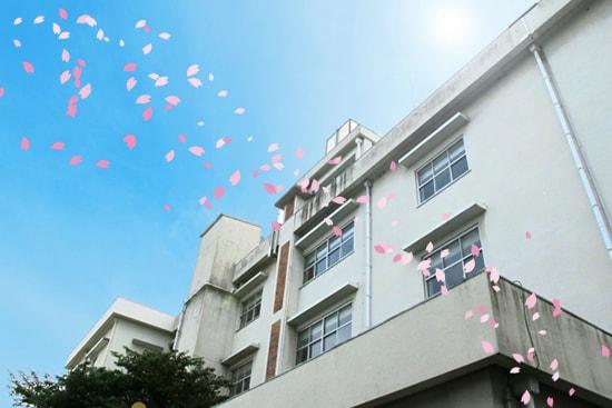 国家試験予備校l向けシステム-学校と桜のイメージ