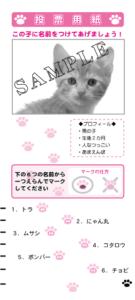 マークシート-サンプル-選挙-004-投票用紙-猫の名前投票